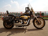 Harley-Davidson FXDL Dyna Low Rider Anniversary - 1450 cc (100th Anniversary)